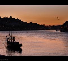 sombras de oporto / shadows of Oporto (- GD photography -) Tags: city bridge sunset portugal río river contraluz puente atardecer boat town barco shadows douro vacaciones sombras oporto 2010 duero sombrasdeoporto