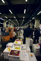 La llotja de Tsukiji / Tsukiji fish market (SBA73) Tags: fish luz japan japanese tokyo honeymoon market mercado tsukiji nippon  boxes pescado nihon lonja japoneses jap tokio llum mercat ligh japn peix cajas llotja caixes wholesalers japonesos viatgedenoces