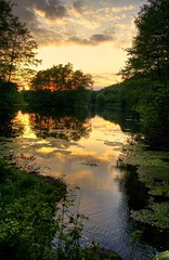 (luzzzelmann) Tags: reflection nature reflections germany landscape deutschland quiet natur handheld nrw hdr sauerland westfalen westphalia 3xp 35faves tnnes k100d mywinners aplusphoto luzzzelmann schloddiewatt alleinefotomacher grnzoix aabachtal kissesfromthailand