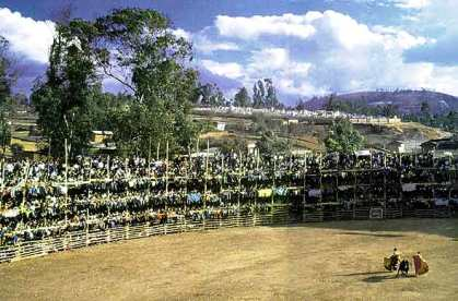 Plaza de toros La Sevillana de Celendín