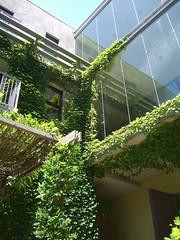 intersection (mmmmmbreed) Tags: wood david glass architecture hotel sticks raw baker steel balcony ivy trellis layers luscious healdsburg