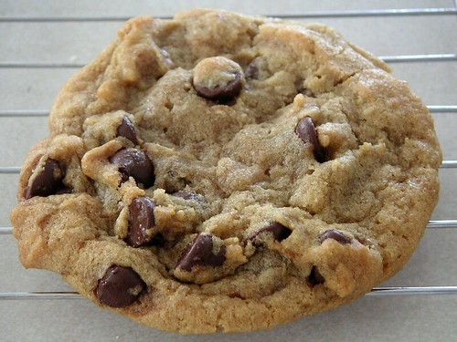 cookiechocolatechip