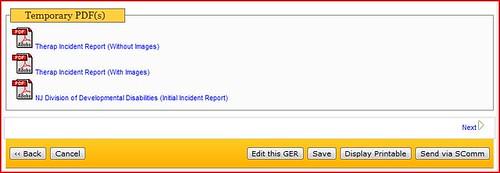 Screenshot of Temporary PDFs