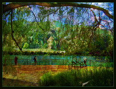 The Big Deck (Tim Noonan) Tags: park trees art digital photoshop effects pond branch manipulation deck treatment tistheseason flickrsbest abigfave anawesomeshot visiongroup proudshopper theperfectphotographer goldstaraward life~asiseeit multimegashot maxfudge awardtree finephotoshopdesign passionateinspirations dragondaggerphoto maxfudgeexcellence novaexcellence absolutegoldenmasterpiece tisexcellence miasbest musicsbest miasexcellence maxfudgeawardandexcellencegroup daarklands lirodon trolledandproud magiktroll