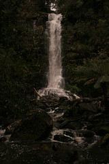 Oz3 263 Erskine Falls (Gillian in Brussels) Tags: nature coast waterfall nationalpark australia shore greatoceanroad erskinefalls greatotwaynationalpark