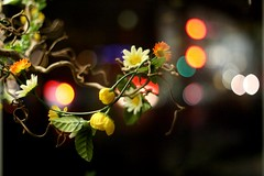 Flowering Lights (F l e u r) Tags: city flowers black berlin night germany lights colorful bokeh kudamm 365bokeh