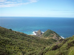 Cape Reinga (- MattW -) Tags: sea newzealand travelling beach waves pacificocean backpacking northisland kiwi tasmansea aotearoa capereinga