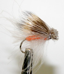 CDC October Caddis