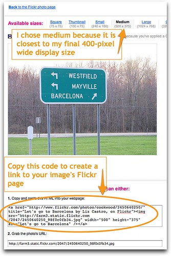 Copy Flickr code for Blogger