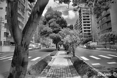 Test - Cokin P007 Infrared Filter (My Neighborhood) (Bernai Velarde Photography ) Tags: street trees canon buildings eos quito gonzales filter infrared suarez cokin velarde 50d bernai p007