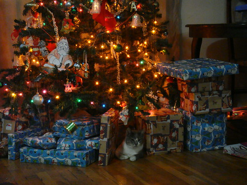 Krismas Kitty (1)