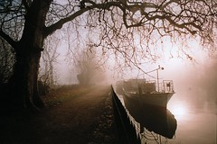UK - Oxford - Christchurch Meadow in fog (Darrell Godliman) Tags: uk greatbritain morning travel winter christchurch england copyright mist travelling tourism misty fog thames river landscape boat europe university britishisles unitedkingdom britain dusk foggy earlymorning explore oxford gb colleges riverthames isis oxforduniversity oxfordshire towpath allrightsreserved christchurchmeadow oxon travelphotography instantfave 5photosaday theuniversityofoxford omot travelphotographer flickrelite dgphotos darrellgodliman wwwdgphotoscouk scenicsnotjustlandscapes dgodliman ukoxfordchristchurchmeadowinfog