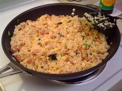 Spam fried rice is served (brendanlim) Tags: standby surprised wakeup unexpected brendan lim automator brendanlim macbook