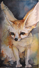 smallest fox in the world..... (Jennifer Kraska) Tags: art pen watercolor jennifer fox ballpoint fennec kraska
