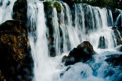 IMG_6179 (tomsstudio) Tags: china travel green water landscape jiuzhaigou 30d