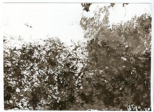 Black Felt Landscape V