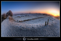 Fisheyed snow @ Het Broek, Mechelen, Belgium :: HDR :: Fisheye (Erroba) Tags: trees winter white snow ice photoshop canon rebel frozen frost belgium belgique tripod belgi sigma fisheye naturereserve tips remote erlend hdr mechelen cs3 10mm 3xp photomatix tonemapped tonemapping xti 400d hetbroek erroba robaye erlendrobaye