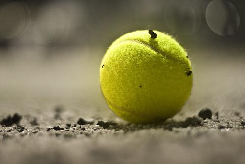 Bóng tennis chuyển từ màu trắng sang màu vàng bắt đầu từ lúc nào?
