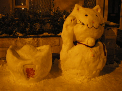 Snow Chinese Cat
