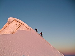 Just about to hit the summit (radson1) Tags: newzealand glacier climbing alpine mountaineering southernalps alpinism alpineclimbing radson mountainsnaps ledenfeld