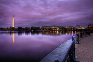 The Purple Potomac