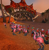 Flamingo Army