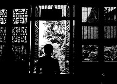 Do not be harder than I've been with you (Shadow Self) Tags: china trees summer white black garden solitude suzhou lattice thebigone worldtrekker