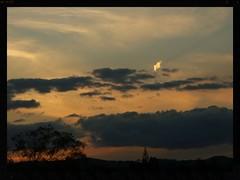 god's selector (Zelda Wynn) Tags: blue sunset black nature weather clouds heaven hand auckland apricot ozone waitakerecity ©zeldawynn zeldawynnphotography