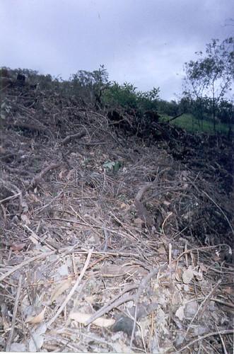 hillside debris