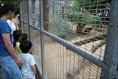 新竹市立動物園29