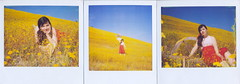 the three (Claire Marie Vogel) Tags: california blue portrait sky flower color film beach girl field smiling fashion yellow self polaroid photography photo claire colorful pretty bright earth hill picture vivid hills photograph laguna spectra vogel fashionable
