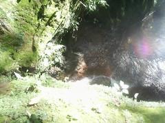 depois da arvore havia outro paraiso echapora sp (nilgazzola) Tags: cidade de foto m 350 ou da com quedas tirada maquina echapora nascente gazzola cachoeiras nilgazzola echaporaspcachoeiraquedaagua nascenteminaburacofotosnilgazzolanilceiagazzola