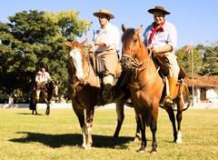 Branco ou colorado (Eduardo Amorim) Tags: brazil horses horse southamerica brasil criollo caballo cheval caballos cavalos pelotas pferde cavalli cavallo cavalo gauchos pferd r