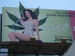 Weeds (catheadsix) Tags: grass cool weeds billboard pot tvshow showtime witty stevensonranch littleboxes marylouiseparker jenjikohan