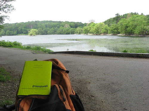 book jamaicapond groundswell