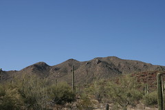IMG_0880 (quinn.anya) Tags: arizona saguaronationalpark
