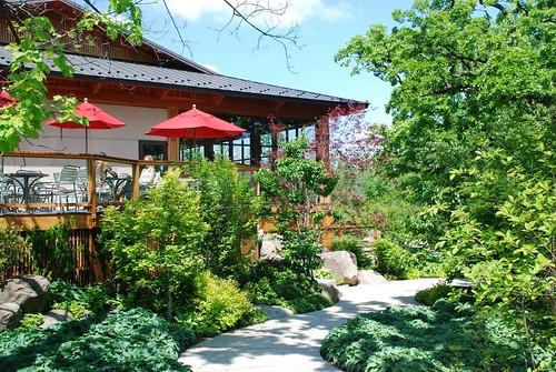 Umbrellas: Anderson Japanese Garden