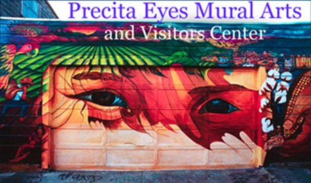 Precita Eyes Mural Arts