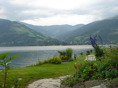 Zell am see Lake (SaudiSoul) Tags: vienna wien cloud mountain lake flower austria zellamsee zell النمسا غيوم جبال سحاب غيم سحب عشب طبيعه بحيره زيلامسي