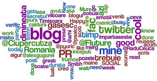 Discutii in twitosfera romaneasca