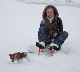 1213331114winter_dog