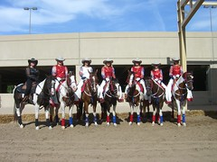 Lone Star Cowgirls 7/4/08 (txshecat0423) Tags: world show horses star american lone tribute cowgirls paints apha