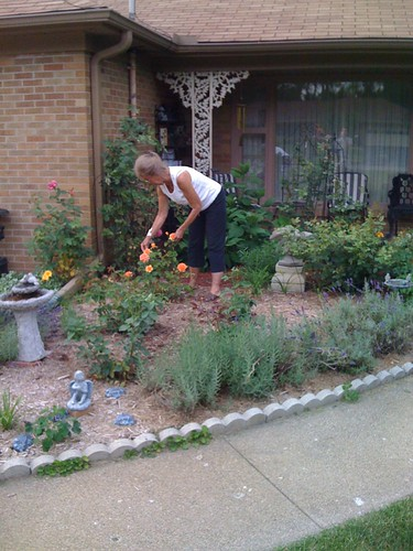 Grandma in the garden