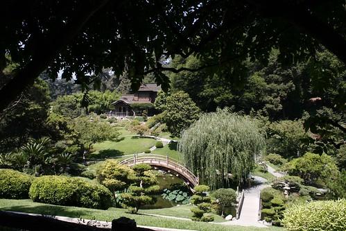 Japanese Garden negative exposure