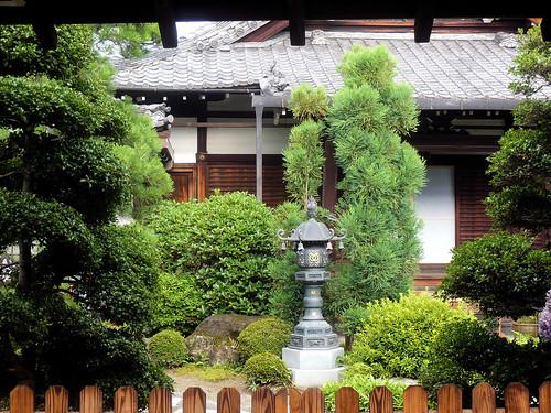 Garden // Jardin