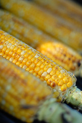 Corn on the BBQ (Smaku) Tags: summer food yellow corn bbq grill butter snack soysauce cornonthecob peachesncream
