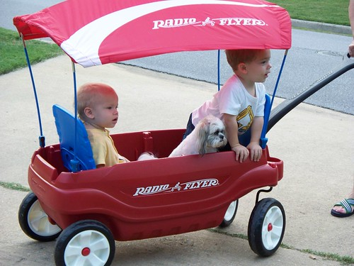 Riding in the Wagon