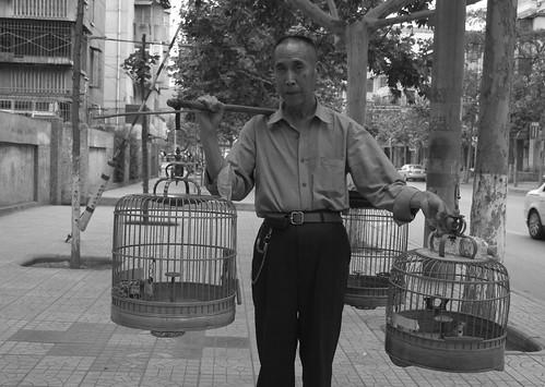 Birdman of Baoji