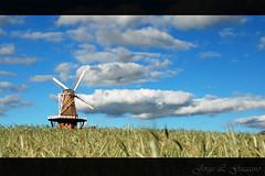 Da Srie: O Moinho de Vento (Jorge L. Gazzano) Tags: explore holambra moinhodevento moulinavent nikond80 jorgelgazzano vosplusbellesphotos