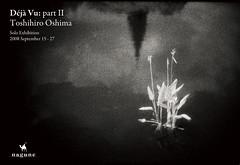 Déjà Vu:part II / postcard